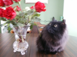 she loves roses - any flower, really